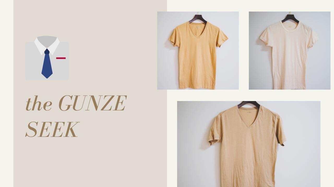 グンゼ|透けないベージュの綿100シャツ「the GUNZE」「SEEK」シリーズを着比べてみた