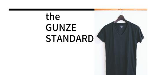GUNZE(グンゼ)|「the GUNZE STANDARD」 綿100メンズVネックインナーTシャツ